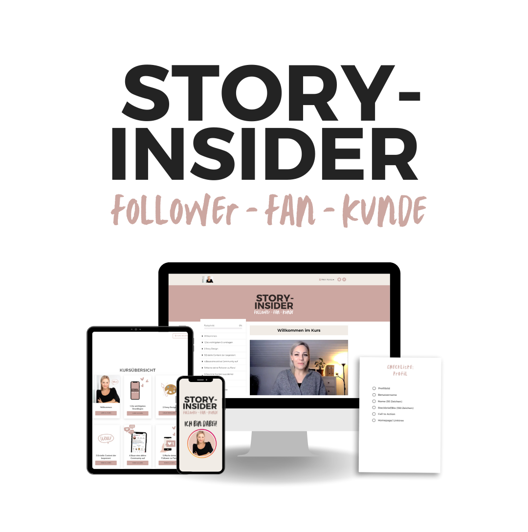 Story-Insider-Onlinekurs